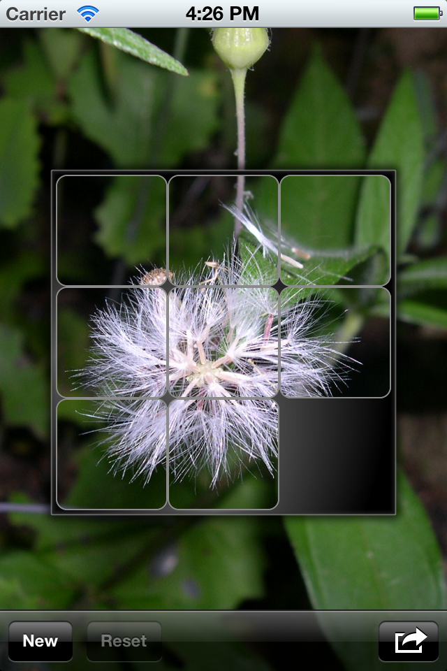 Screenshot Tyro Puzzle +